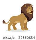 Lion Cartoon Icon in Flat Style Design 29860834