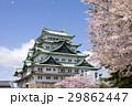 名古屋城、桜吹雪 29862447