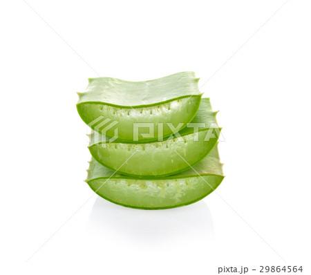 Aloe vera plant on white background 29864564