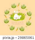 Little rabbit dreaming about vegetables 29865061