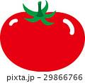 トマト 29866766