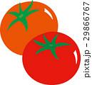 トマト 29866767