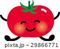 トマト ベクター ミニトマトのイラスト 29866771