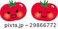 トマト ベクター ミニトマトのイラスト 29866772