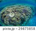 海中 海 沖縄の写真 29873858