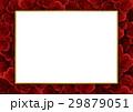 背景素材 (敷き詰めたバラ、ホワイトボード) 29879051