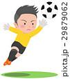サッカー キーパー 29879062