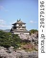 丸岡城 桜 城の写真 29879196