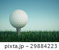 Golf ball with tee in the grass on sky background 29884223