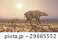 Adult Paraceratherium and baby Paraceratherium 29885552