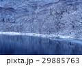 冬の湖畔 湖畔 夜明けの写真 29885763