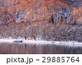 冬の湖畔 湖畔 夜明けの写真 29885764