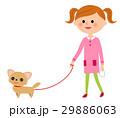 人物 子供 女の子のイラスト 29886063
