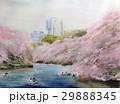 千鳥ヶ淵公園 東京名所 桜 スケッチ 29888345