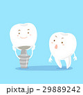 tooth with implant 29889242