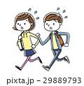 学生 男の子 女の子のイラスト 29889793