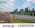 武蔵小杉 多摩川 新幹線の写真 29895606
