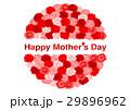 母の日 カーネーション 花のイラスト 29896962