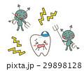 虫歯 バイキン 歯のイラスト 29898128