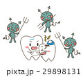 虫歯 バイキン 歯のイラスト 29898131