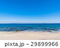 《静岡県》伊豆・白浜海岸の美しいビーチ 29899966