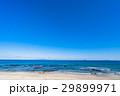 白浜海岸 海 海岸の写真 29899971