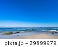 《静岡県》伊豆・白浜海岸の美しいビーチ 29899979