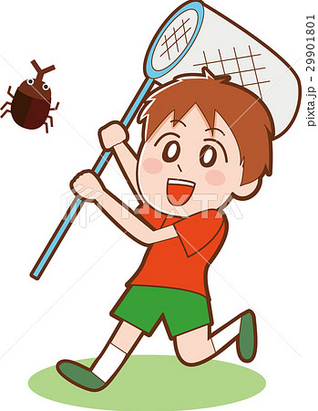 虫取りをする少年のイラストのイラスト素材 29901801 Pixta