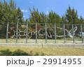 沖縄 名護市辺野古の国境フェンス キャンプシュワブ【2017年4月撮影】 29914955