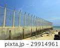 沖縄 名護市辺野古の国境フェンス キャンプシュワブ【2017年4月撮影】 29914961