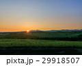 日の出 美瑛 風景の写真 29918507