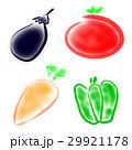 野菜 29921178