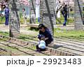 ライフスタイル かくれんぼをして遊ぶ親子 29923483