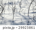 texture of natural snow and twigs 29923861