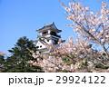 高知城の青空と桜 29924122