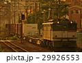 南部支線を走るEF65形牽引の貨物列車 29926553