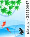 金魚 魚 魚類のイラスト 29930047