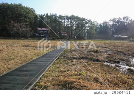 徳島県三好市 黒沢湿原 29934411