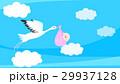 コウノトリ 29937128