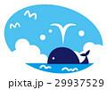 鯨 潮吹き 動物のイラスト 29937529