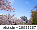 桜咲く春の彦根城 29938287