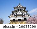 桜咲く春の彦根城 29938290
