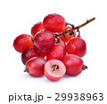 fresh red grapes with water drops isolated 29938963