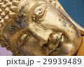 涅槃仏 29939489