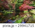 八瀬 京都 紅葉の写真 29941715