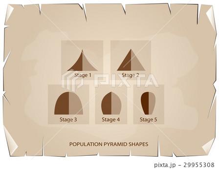Different Types of Population Pyramidsのイラスト素材 [29955308] - PIXTA