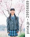 笑顔 女の子 入学の写真 29956689
