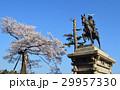 伊達政宗 桜 春の写真 29957330