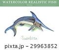 水彩画 透明水彩 サカナのイラスト 29963852