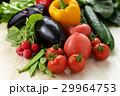 野菜 29964753
